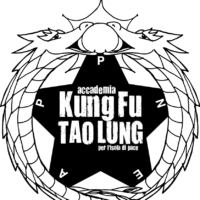 kung fu tao lung